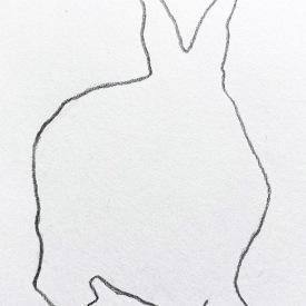 bunny-illustration-web-optimized