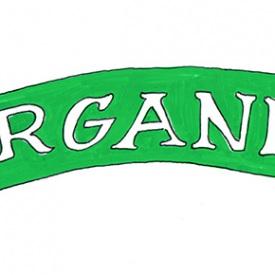 organic-banner-illustration-web-optimized