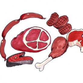 red-meat-illustration-web-optimized