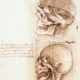 Leoonardo da Vinci, 1489