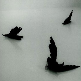"Kiki Smith, ""Jersey Crows"", 1995, part of the installation Night, 1998"