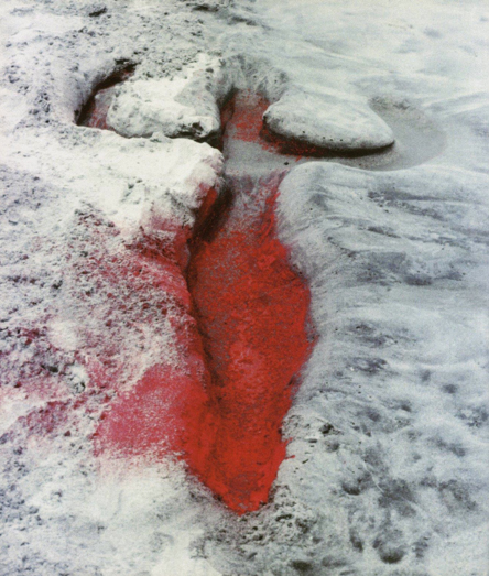 Ana Mendieta, Untitled from the Silueta Series, 1976