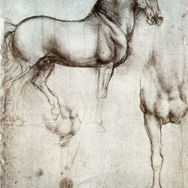 Leonardo, Studies of a Horse, c. 1482-1499