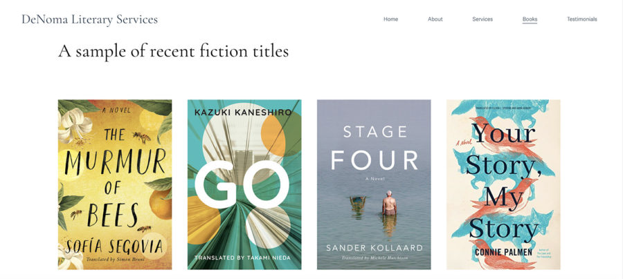 Excerpt of portfolio page, featuring several book covers from fiction titles.