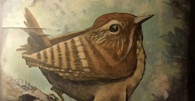 Whimsical sparrow looking over its shoulder